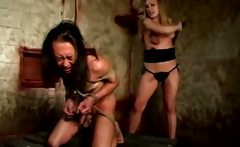Dominatrix fond of cat o nine tails to punish